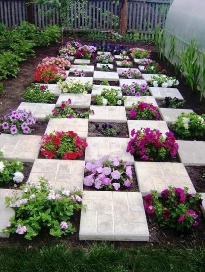 como plantar petunias 2