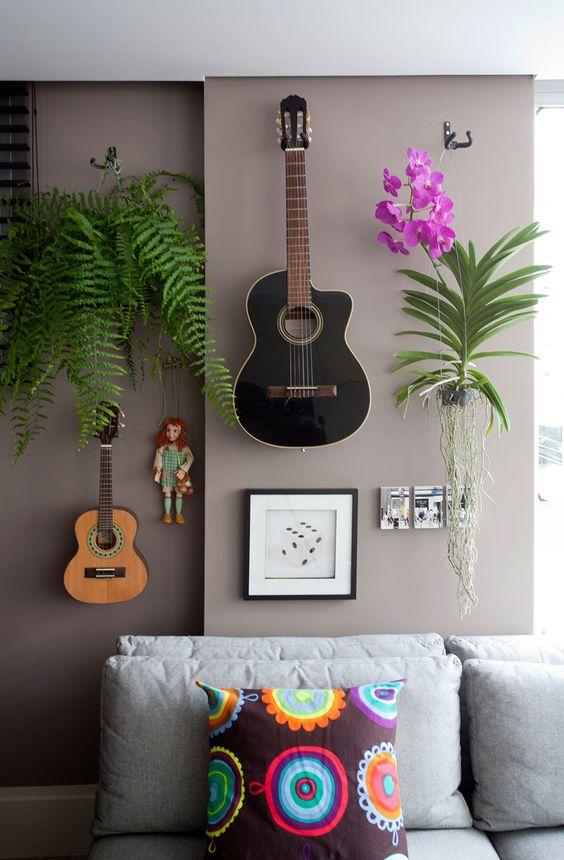 cuidar samambaias decoracao sala
