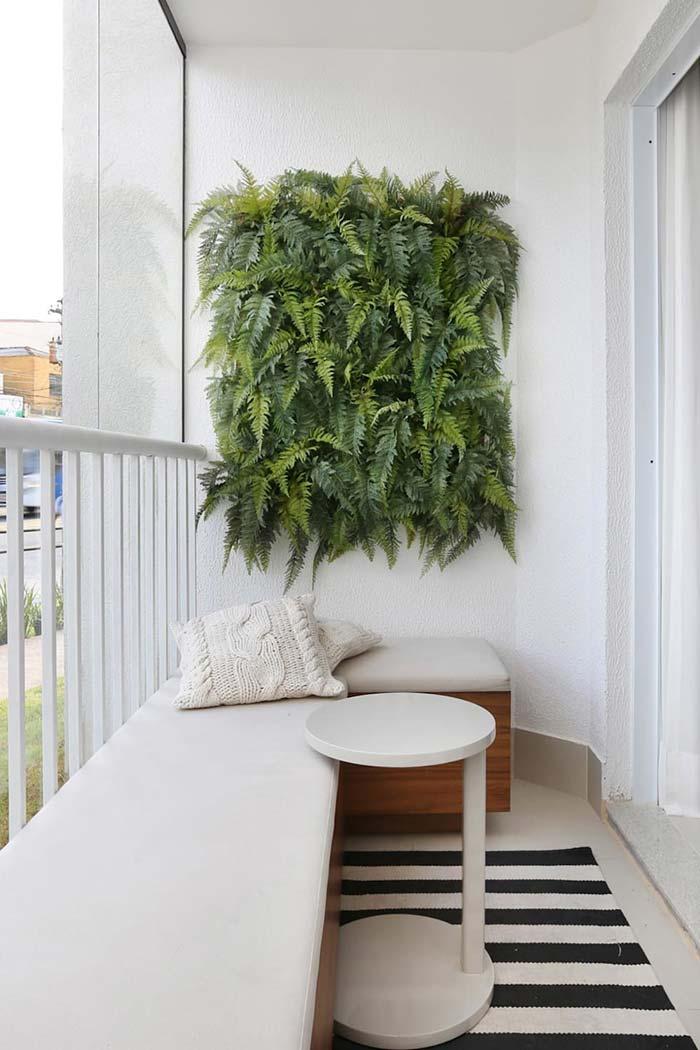 cuidar samambaias decoracao varanda