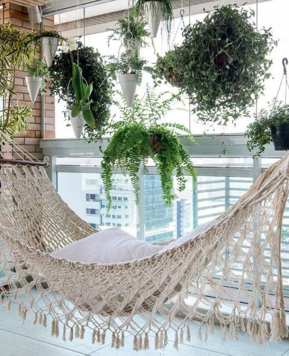 cuidar samambaias decoracao varandas
