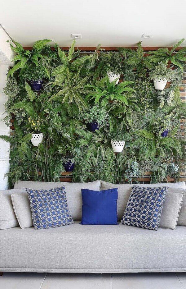 cuidar samambaias jardim vertical