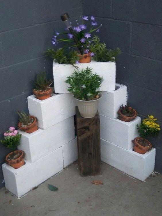 ideias criativas plantar concreto