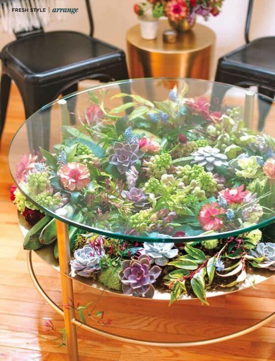 ideias plantar suculentas mesa