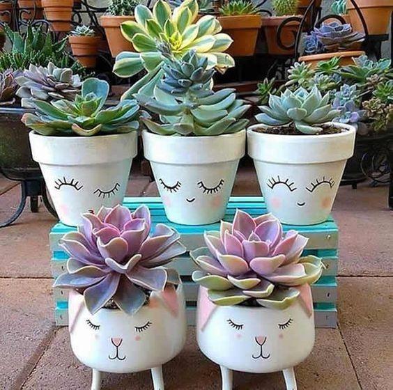 ideias plantar suculentas vaso