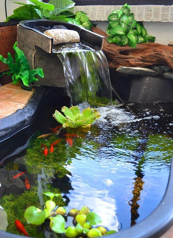 lago jardim cascata