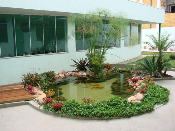 lago jardim pedras plantas