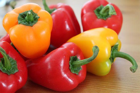plantar pimentao beneficios