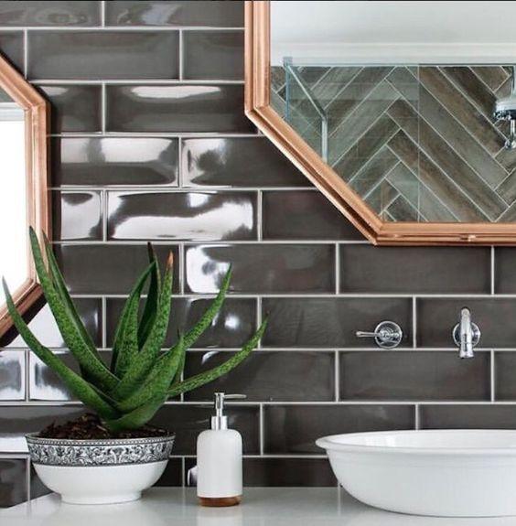 plantas banheiro aloe vera ideias