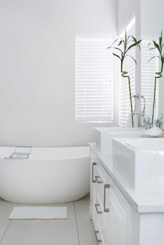 plantas banheiro bambu sorte