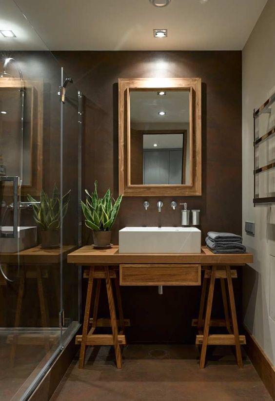 plantas banheiro espada sao jorge decoracao