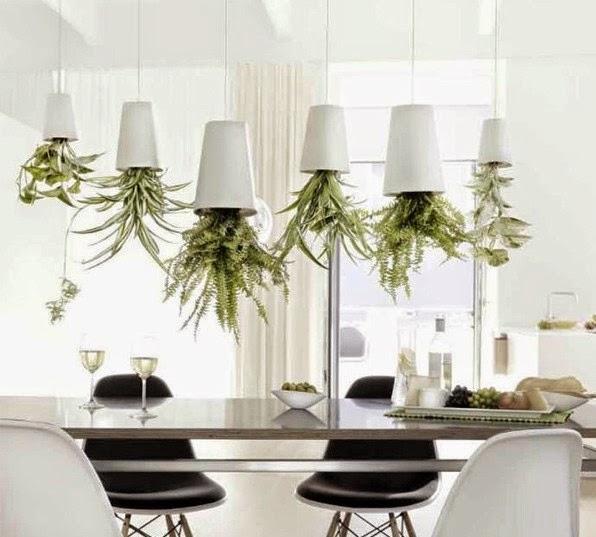 sky planters cozinha