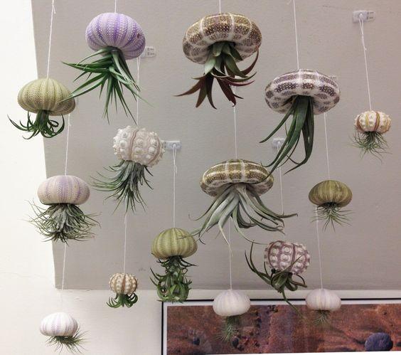 sky planters diy ideias