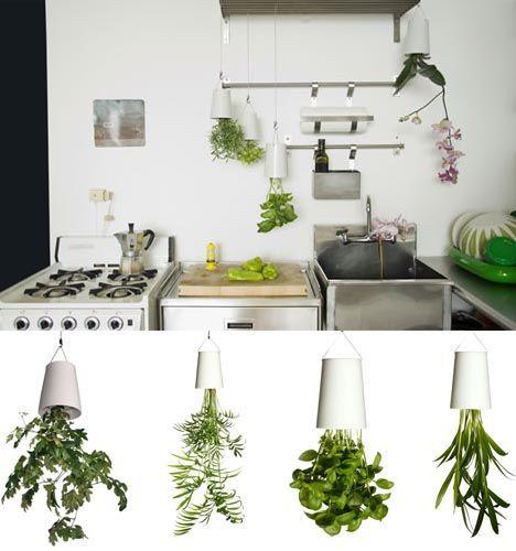 sky planters ideias cozinha