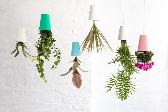 sky planters ideias simples
