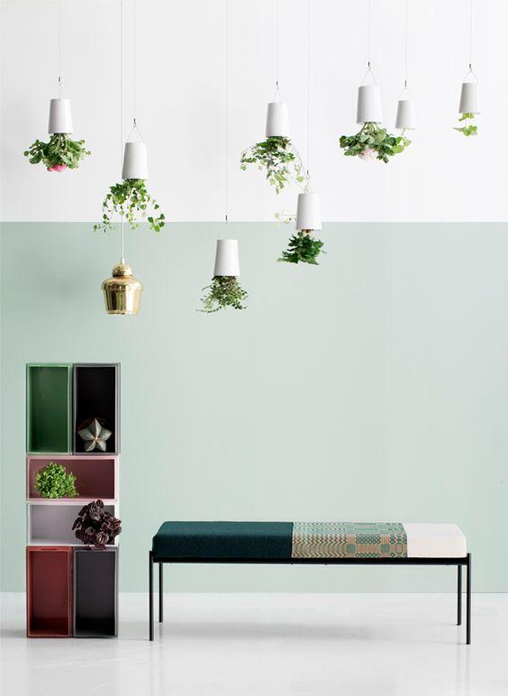 sky planters inspiracao