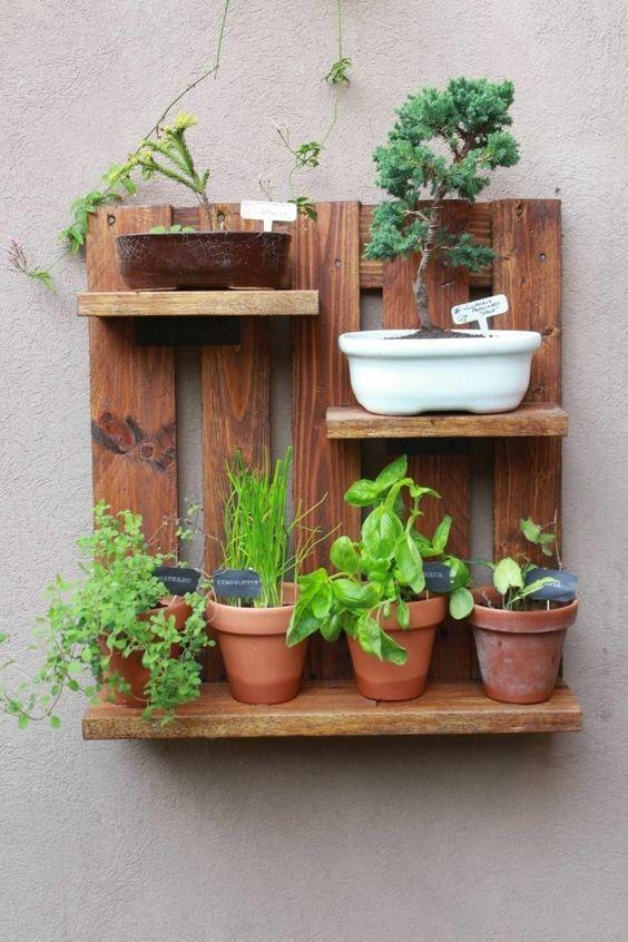 suporte plantas paletes 3